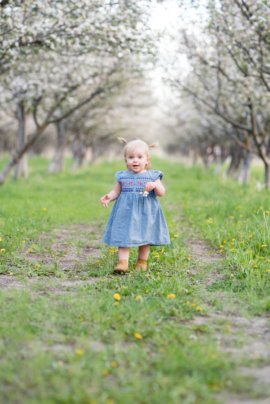 Little girl in blue dress in apple orchard blossoms